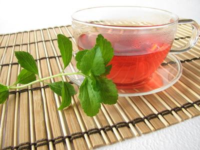 stevia keine kalorien dank pflanzlicher s e blog f r fitness sthetik und ern hrung. Black Bedroom Furniture Sets. Home Design Ideas