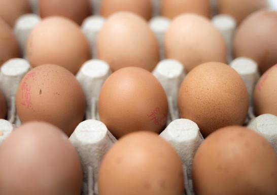 Eier in der Mikrowelle?